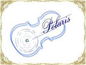 Polaris rogo 300x225 - Polaris rogo