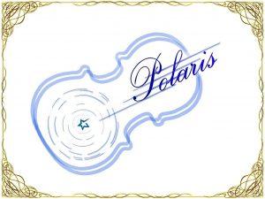 Polaris rogo2 300x225 - Polaris rogo2